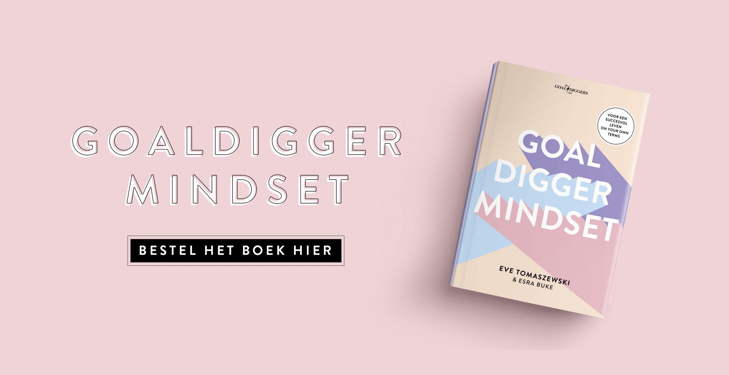Goaldigger-Mindset-boek